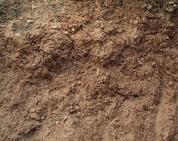 red  dry ground dirt.jpg