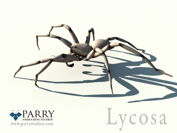 Spider with procedural walking rig