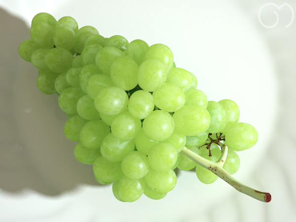 3d model photorealistic white grape - Grape White... by goodmesh