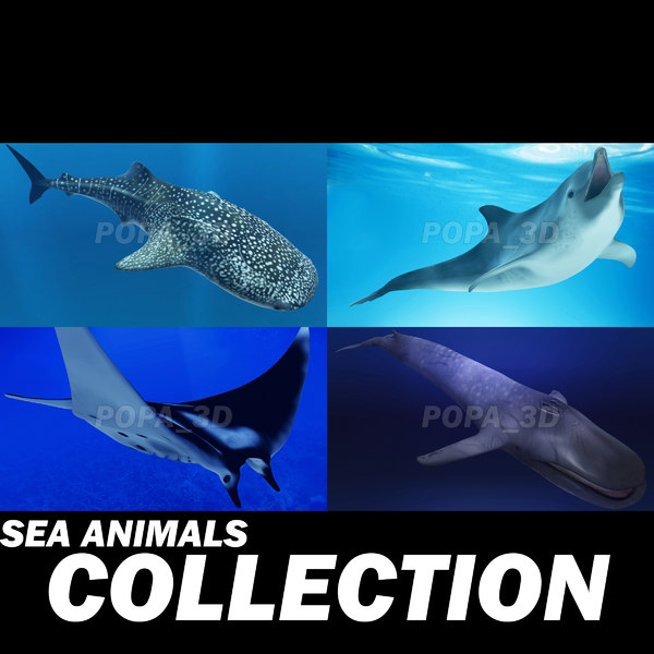 shark sea animals 3d max
