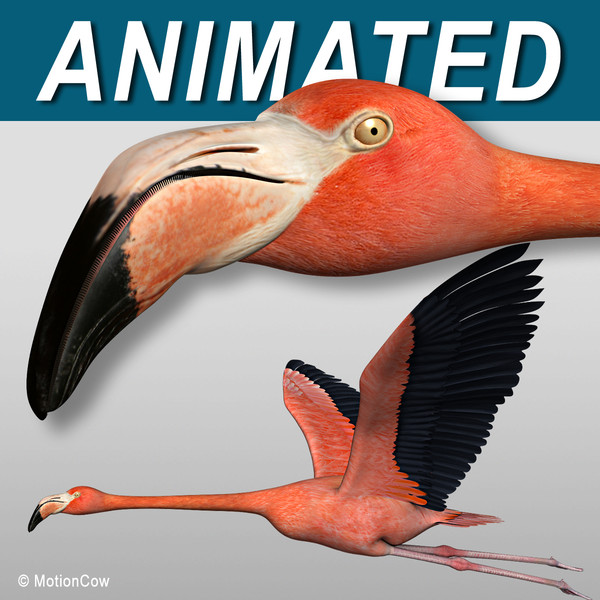 maya realistic flying flamingo