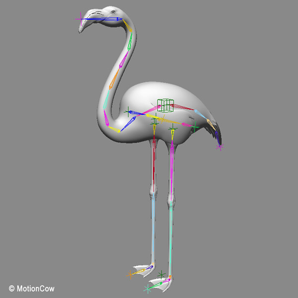 3d realistic flamingo - Flamingo ( Folded Wings)... by MotionCow