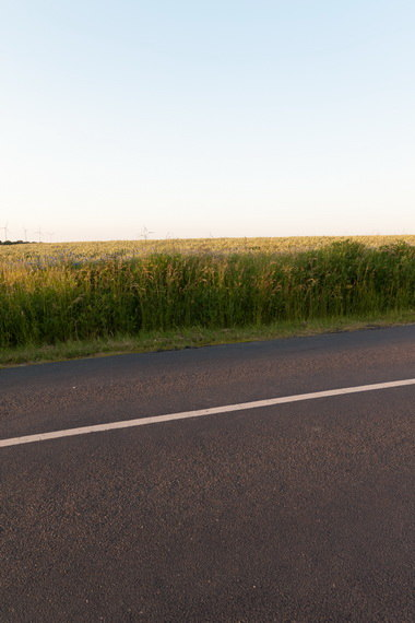 Road in Field 1 w/ Backplates