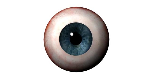human eye 3d ma