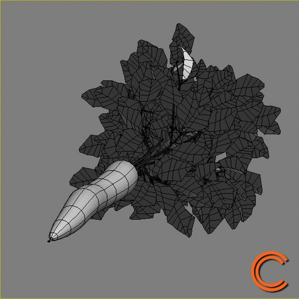 3d model of carrot vegetable - Vegetable 6 Carrot... by CutCat