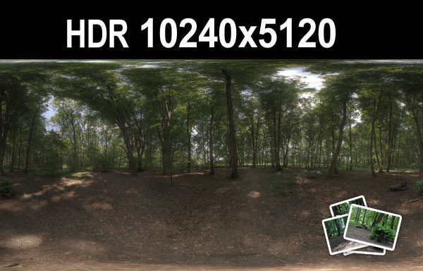 HDR 116 Forest Plates