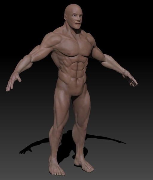 Detailed male nude 3d model