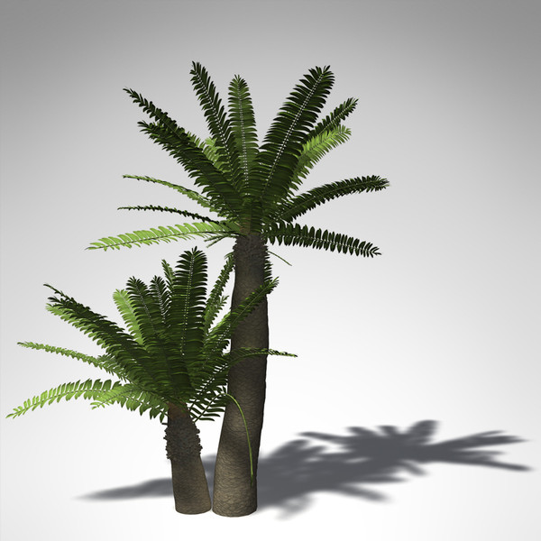 3ds max xfrogplants bushman - XfrogPlants Bushmans River Cycad... by xfrog