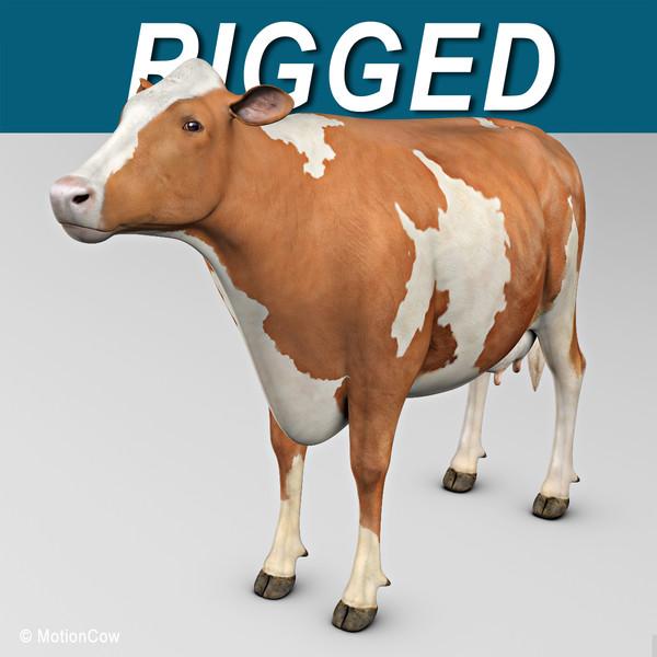 ayrshire cow 3d model