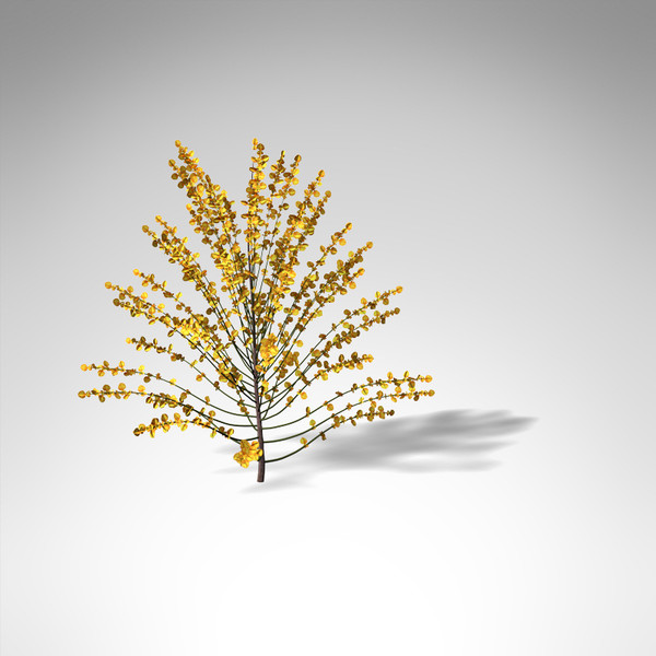 3d xfrogplants spanish broom shrub model - XfrogPlants Spanish Broom... by xfrog