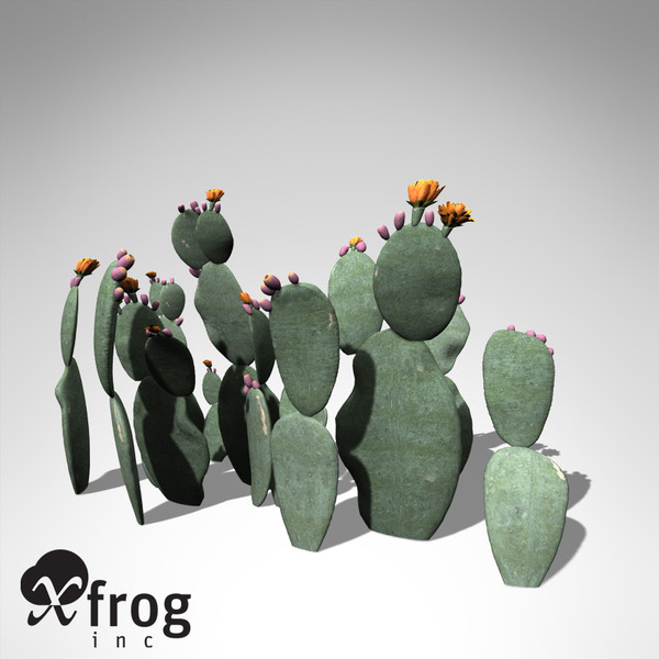 3ds xfrogplants prickly pear plant - XfrogPlants Prickly Pear... by xfrog