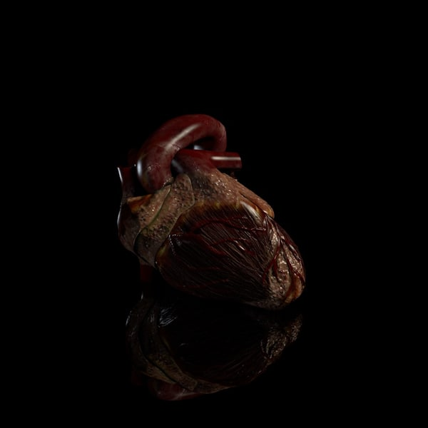 cinema4d heart beating - Beating Heart... by IMM