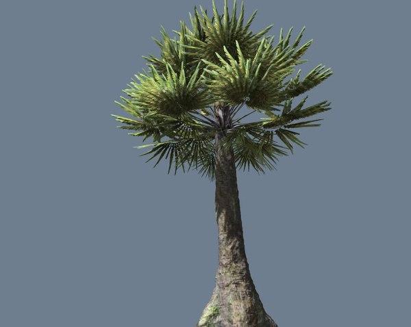 palm tree pretty 3d fbx