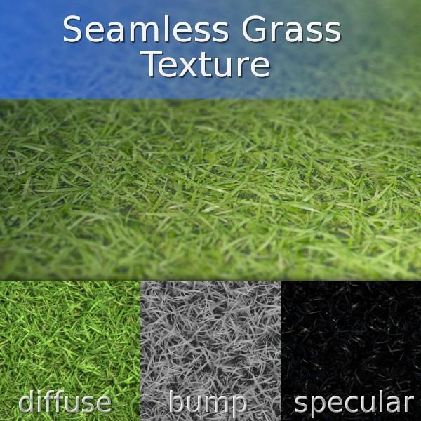 Grass Seamless Texture