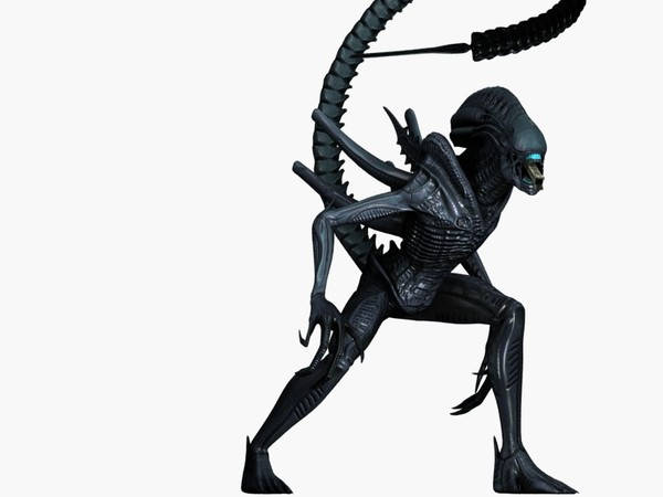 Warrior Alien