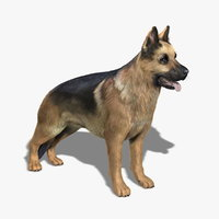 german shepherd fur 3d model
