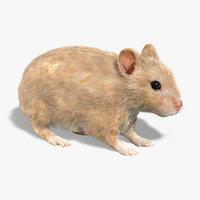 hamster fur obj