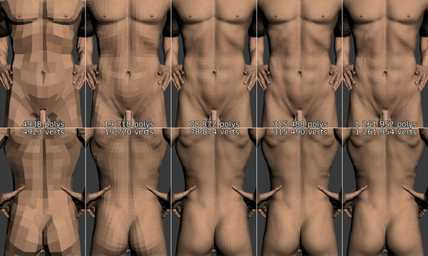 3d model male body - Male Body... by Nikola Dechev