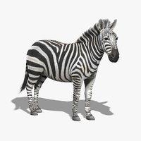 3dsmax photorealistic zebra fur
