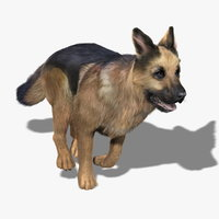 German Shepherd (FUR) (ANIMATED)