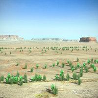 Desert Landscape Terrain Arizona