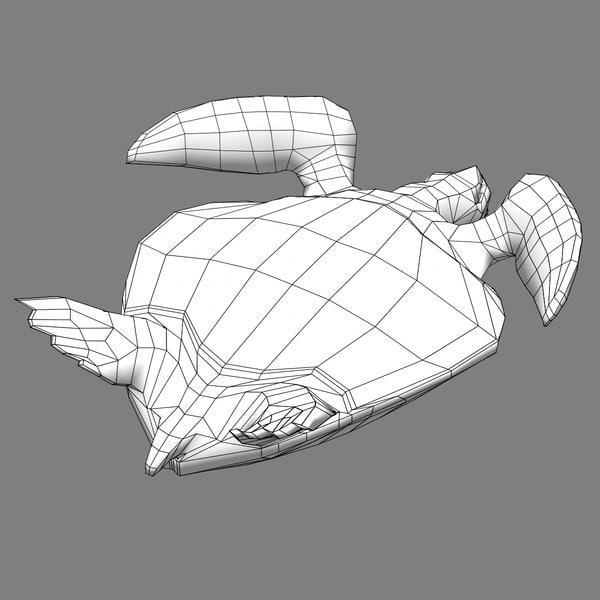 Turtle Shell Sea Turtle Shell Texture
