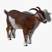 maya goat fur hair