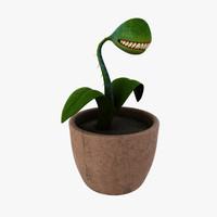 Evil Plant