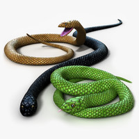 Snake - Rigged