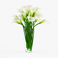 3ds max vase calla flowers