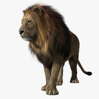 Lion (2) (RIGGED) (FUR)