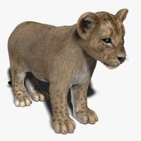 obj lion cub fur