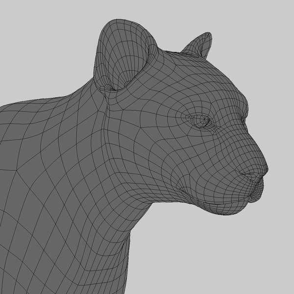 maya cougar fur animation - Cougar (ANIMATED) (FUR)... by Massimo Righi