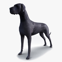 Great Dane 3D models