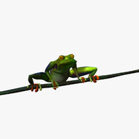 Tree Frog Animated