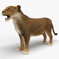 3ds max lioness fur animal