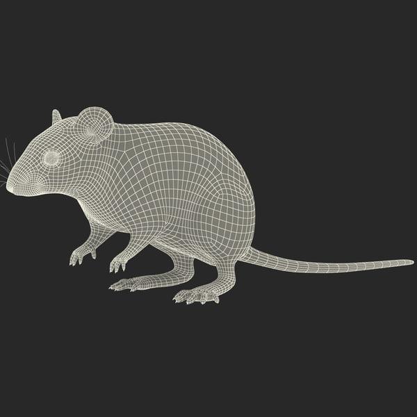 White Mouse 3d Model