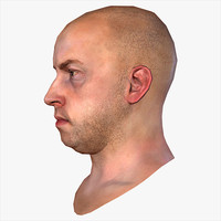 3d realistic human male head model