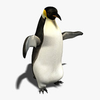 3d penguin animation model