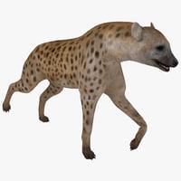 3d hyena pose 1