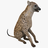 maya hyena pose 3