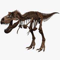 3d tyrannosaurus rex skeleton t-rex model