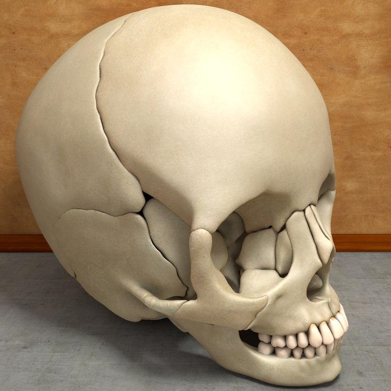 Skullcover02.jpg