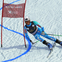 Alpine Giant Slalom Player