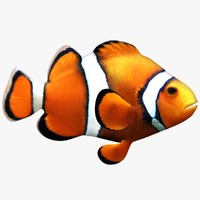 clownfish scanline 3ds