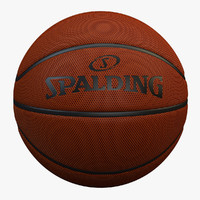 3d basketball spalding