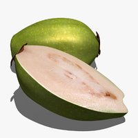 guava scanline 3d model