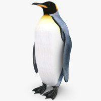 3d king penguin
