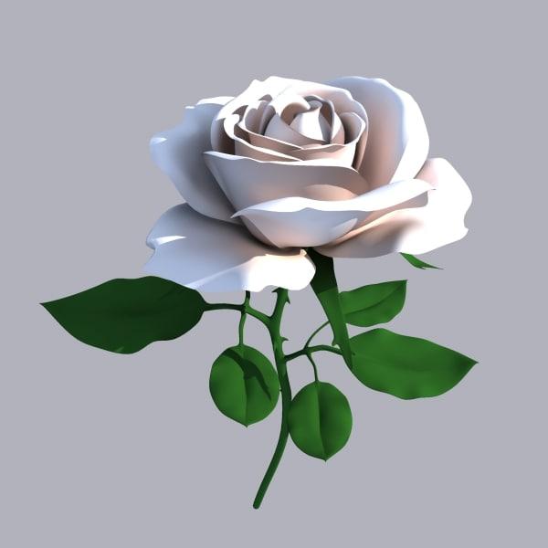 rosa01.jpg