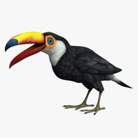 3d model of bird